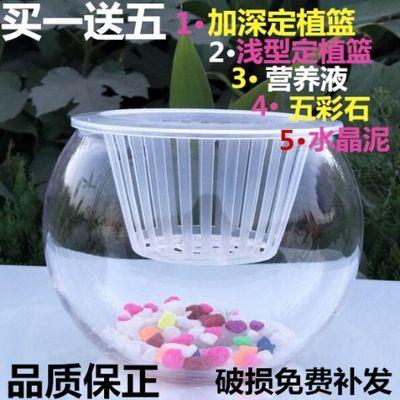 创意水培花瓶小玻璃圆睡莲泥供佛子装饰特大号壁挂竹盆透明茶几摆