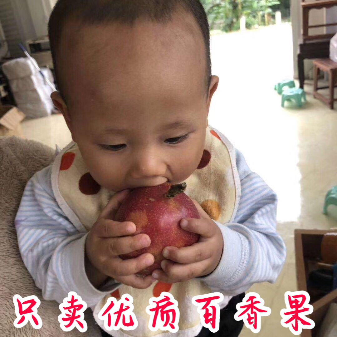 广西百香果5斤送开果器热带新鲜水果鸡蛋果现摘精装大红果1斤大果_7