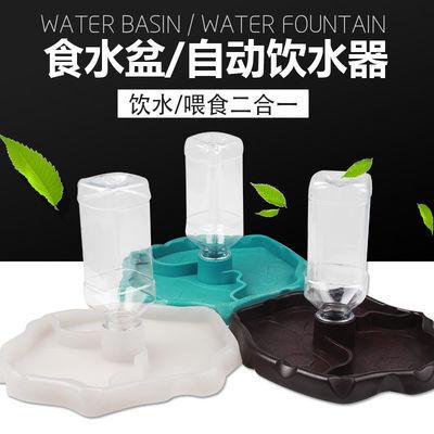 陆龟水盆食盆自动饮水器喝水盘角蛙蜥蜴蛇乌龟用品爬宠爬虫喂水器