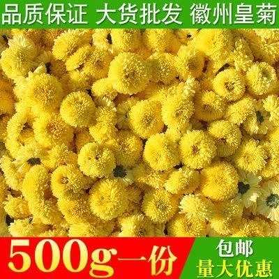 菊花茶250g500g徽州皇菊黄菊两朵一杯大朵散装贡大黄菊花草茶包邮