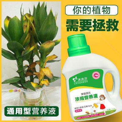 营养液植物通用型水培花卉盆栽绿萝多肉蔬菜有机液体花肥料叶面肥