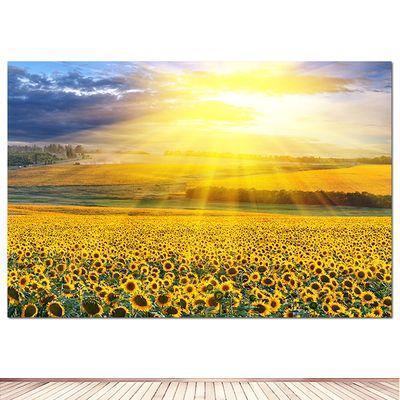 向日葵海报 太阳花 风景装饰画自粘贴画房间装饰挂画花卉墙画壁纸