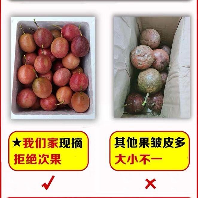 广西百香果5斤送开果器热带新鲜水果鸡蛋果现摘精装大红果1斤大果_5