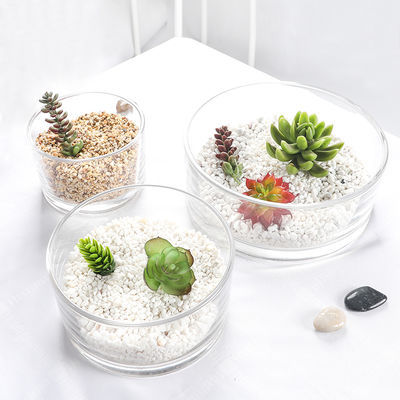 视远花瓶圆形玻璃花盆透明特大号水培绿萝水仙大容量多肉盆栽花盆