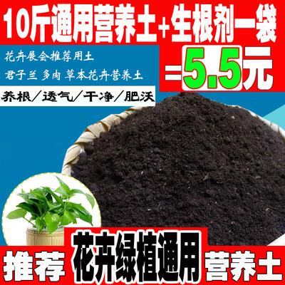 盆栽花卉肥料种球花卉专用肥营养土花料百合郁金香风信子