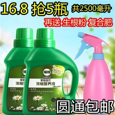 【买2份喷壶】花卉肥料营养土液多肉绿植盆栽养花通用型复合肥