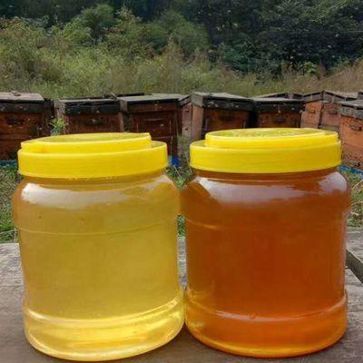 农家蜂蜜纯正天然农家自产山花蜜洋槐百花蜜自家养土蜂蜜峰蜜野生