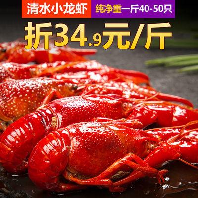 净重2斤潜江小龙虾鲜活烧制熟食清水小龙虾十三香麻辣小龙虾