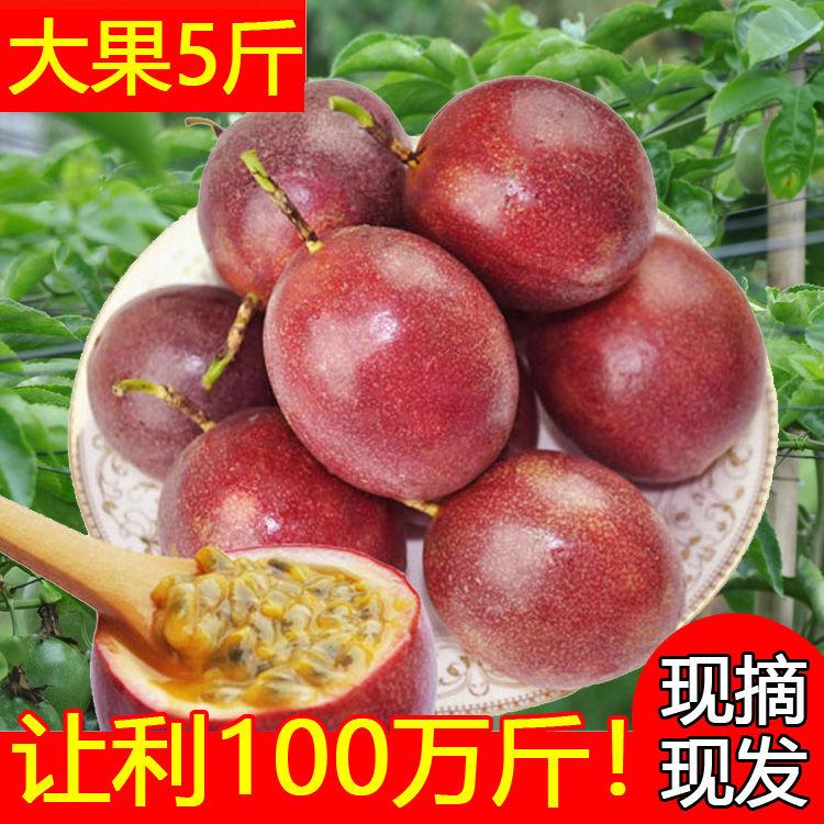 【只发精品果】广西百香果精选大果5斤新鲜水果12个1/3斤酸甜多汁_9