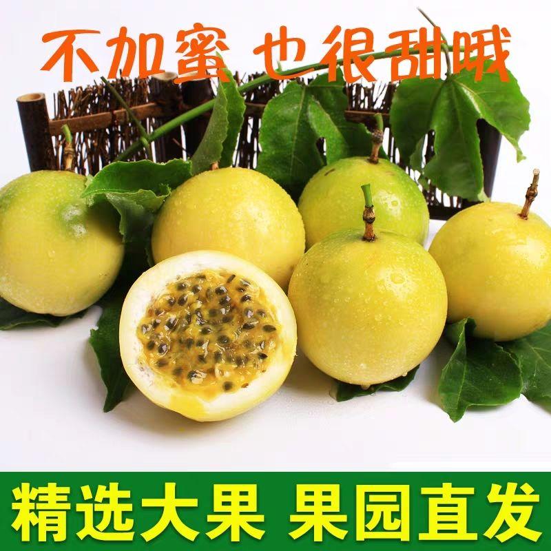 【天天特价】黄金百香果当季孕妇新鲜水果中大果香甜黄皮鸡蛋果_2