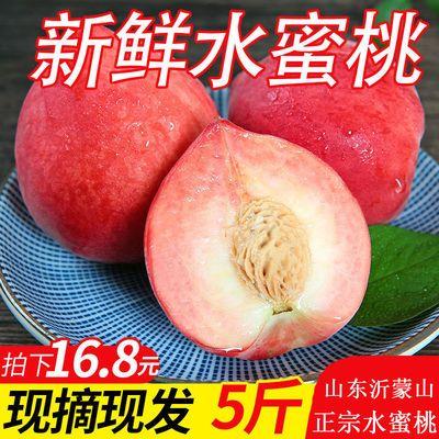 山东沂蒙山现摘水蜜桃新鲜水果3斤/5斤批发包邮当季毛桃脆甜桃子