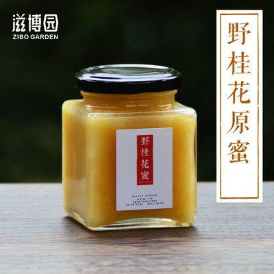 桂花蜜500g农家自产蜂蜜正品野生木桶土蜂蜜纯正天然蜂蜜成熟蜂蜜