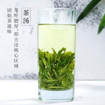 仰天雪绿 固始茶叶绿茶2020年新茶 信阳毛尖高山茶雨前罐装250g
