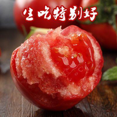 现摘甘肃沙瓤沙漠西红柿新鲜番茄孕妇水果沙瓤番茄应季蔬菜批发8