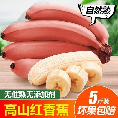 新鲜香蕉水果包邮土楼红皮香蕉苹果蕉红美人蕉红香蕉小米蕉泡沫箱【9月9日发完】