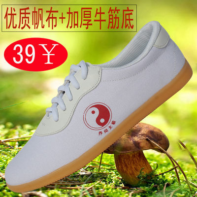 阴阳太极鞋帆布女男春夏季加厚牛筋底布鞋太极拳鞋练功鞋武术鞋