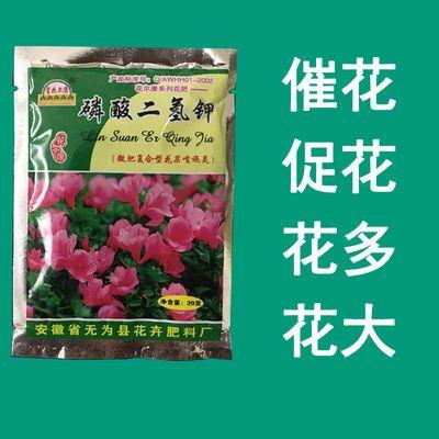 酸二氢钾花卉叶面肥水溶肥氮磷钾复合肥养花肥料营养肥【送勺】磷