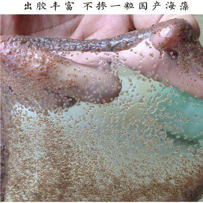 新款AAAA级珍珠粉小颗粒海藻面膜500-1200克补水美白淡斑祛痘修复