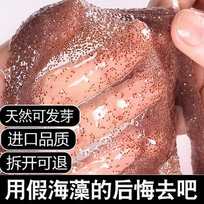 新款爆款天然纯补水保湿美白淡斑祛痘泰国小颗粒海藻面膜粉泥收缩