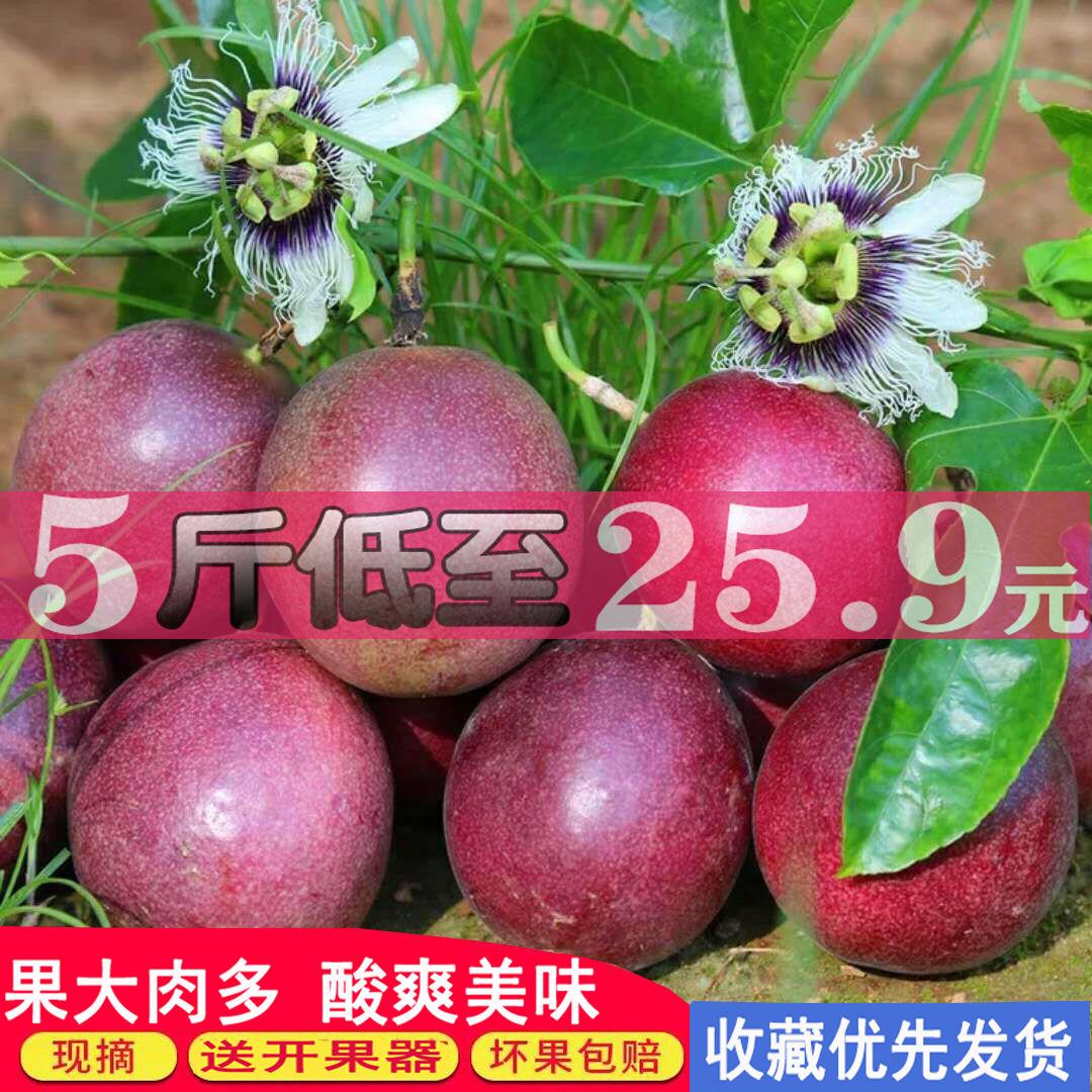 【送开果器】广西百香果大果5斤3斤12个新鲜酸甜多汁水果果园直供_1