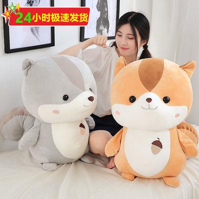 松鼠毛绒玩具仓鼠公仔暖手抱枕可爱小豚鼠玩偶布娃娃生日礼物女生主图
