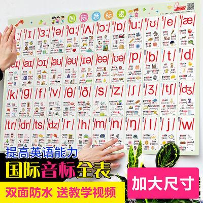英语国际音标挂图入门英语教程教具墙贴小学48个英语音标发音教材