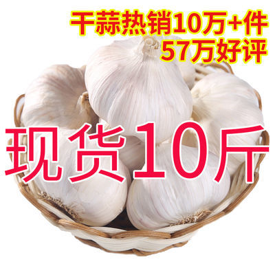 干大蒜头10斤5斤2斤紫白皮大蒜头批发干蒜【2月29日发完】