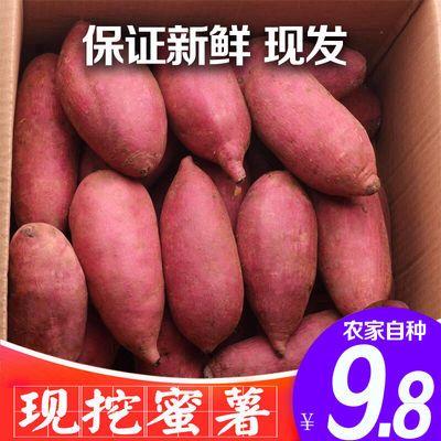 板票红薯小香暑地瓜5斤板粟番著新鲜包邮黄心山芋沙地香甜蜜紫苕