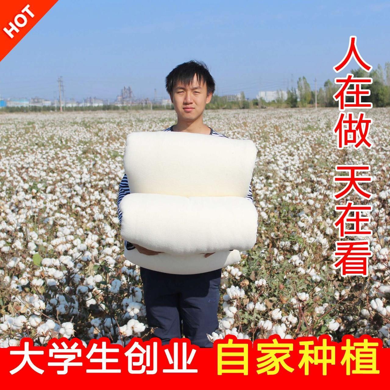 新疆棉被纯棉花被子冬被全棉春秋被芯棉絮床垫被褥子单人学生棉胎