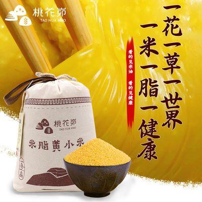 【19年新米】米脂黄小米特产桃花峁宝宝孕妇月子米小黄米小米粥米