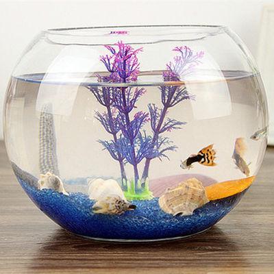 鱼缸透明玻璃办公桌创意水培圆形圆球圆型小型乌龟迷你桌面金鱼缸【3月8日发完】