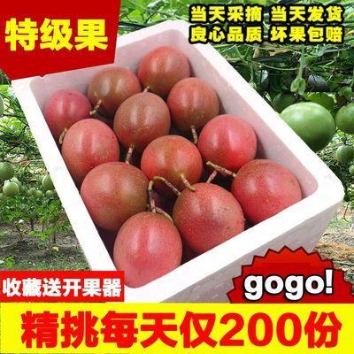 广西百香果5斤特大果70-100g大果50-80g现摘新鲜水果12310斤