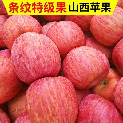 山西新鲜现摘红富士苹果正宗水果脆甜冰糖心丑苹果3/5/9.5斤批发