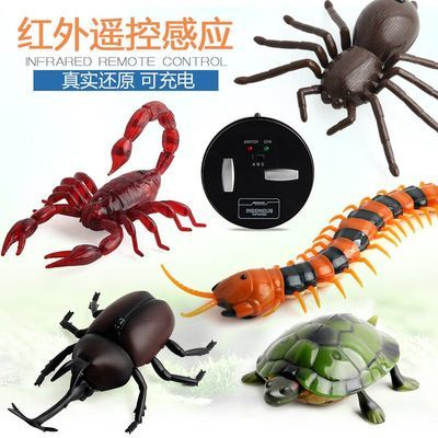 新奇特遥控蝎子蜈蚣乌龟蜘蛛甲虫红外线感应爬行动物电动遥控玩具