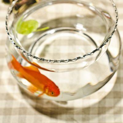 意水培花器 花边生态透明 圆形玻璃 金鱼缸 乌龟缸 花瓶装饰