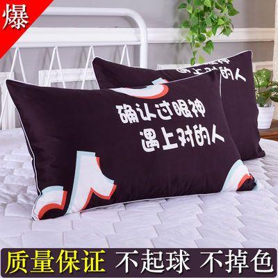 枕头套一对枕套一对装成人家用大号一只一个单个单人学生宿舍可爱