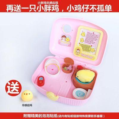 可爱的儿童玩具小鸡宠物养成屋玩具小鸡女孩男孩小玲玩具生日礼物