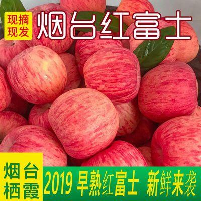 【红富士2019新果下树限时促销】山东烟台栖霞脆甜苹果水果3斤5斤