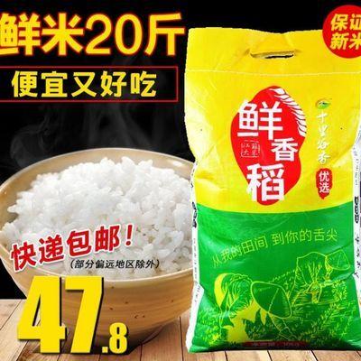 江苏大米10kg十里谷香18新米软香糯宝宝粥米农家自产珍珠梗米20斤
