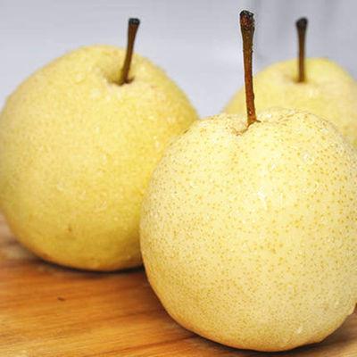 现摘10斤梨子新鲜甜酥梨 冰糖雪梨陕西蒲城脆甜皇冠梨子香梨3斤梨