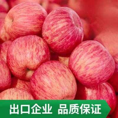 【限时特价】山东烟台红富士苹果整箱批发头3斤/5斤新鲜水果盔