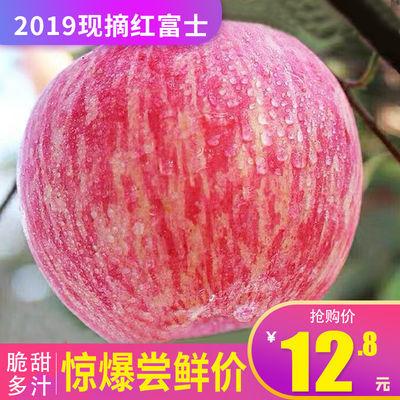 新鲜水果现摘红富士苹果脆甜多汁孕妇水果2斤5斤10斤包邮非冰糖心