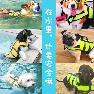 大狗狗衣服金毛小狗柯基泰迪救生衣小型大型犬宠物游泳圈夏天用品