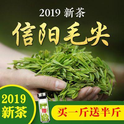 绿茶【买一斤送半斤】信阳毛尖2019新茶散装浓香型高山茶毛尖茶叶