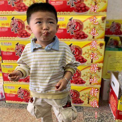新疆红枣【买3斤送2斤】红枣批发 灰枣 枣子 500g自封口独立包装