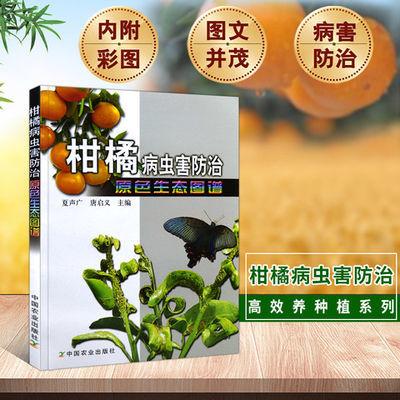 柑橘病虫害防治原色生态图谱柑橘种植技术书果树修剪书籍果树嫁接