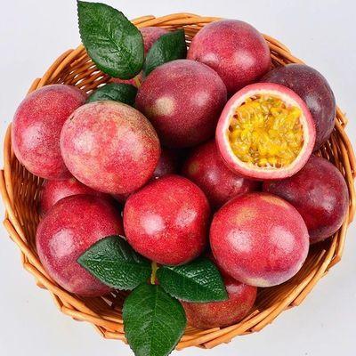 【送开果器】广西百香果大果235斤装(单果40-60克)新鲜水果12个