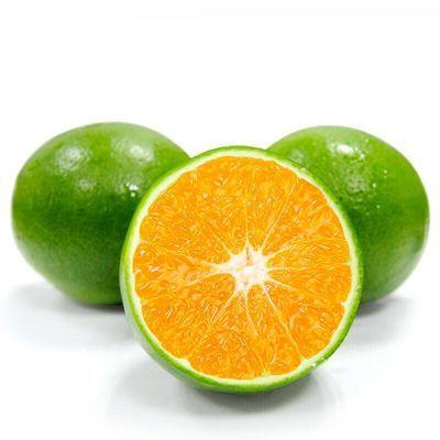 青皮蜜桔橘子8/5/3斤装当季新鲜水果薄皮多汁桔子多仓发货