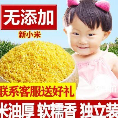山西小米黄小米粥 农家小黄米特产特级新米脂吃的食用小米杂粮5斤