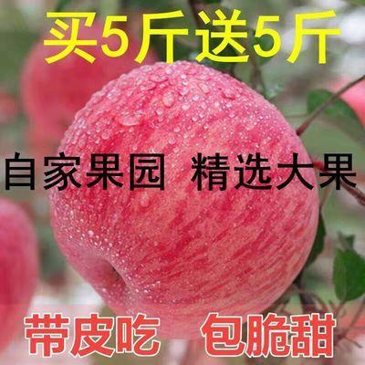 【限时特价】陕西洛川新鲜现摘红富士苹果水果冰糖心5/10斤整箱